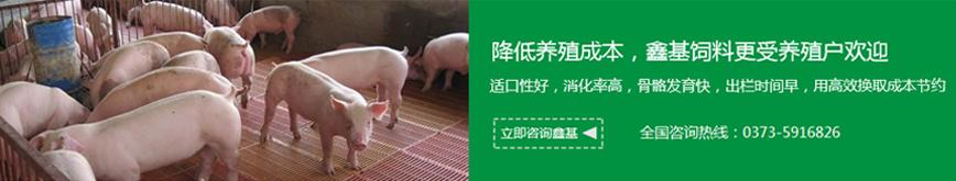 郑州教槽料